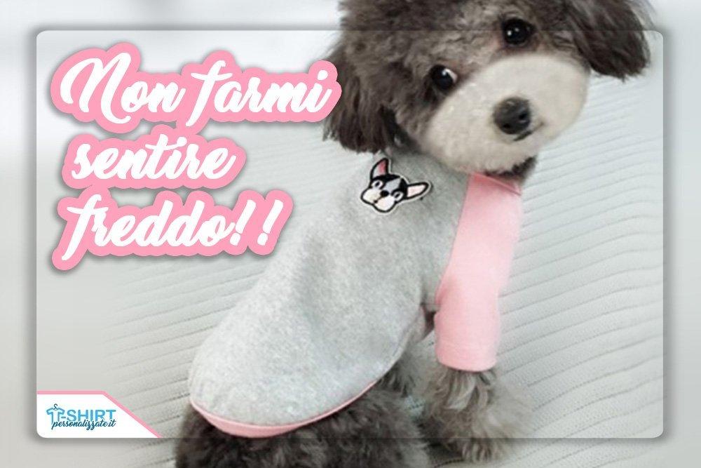 maglie personalizzate per cani